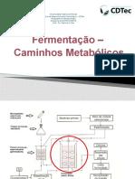 fermentação vias metabolicas
