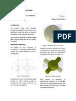 FEM.alejandrohoyos.p1