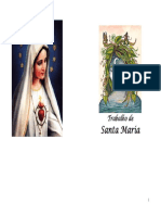 Santa Maria..pdf