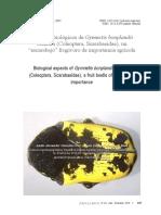 2013, Gymnetis bonplandii en Perú. Cetoniinae - Copy.pdf