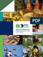 Biodiversidade e serviços ecosssitemicos