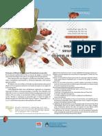 Programa fitosanitario para perales