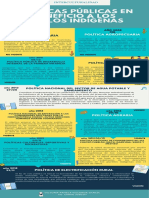 Políticas Públicas Pueblos indígenas.pdf