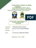 PRODUCCION Y MANTENIMIENTO DE CLONES EN MANZANOS Y DURAZNOS