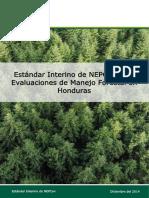 NEPCon-Interim-Standard-Honduras-SPA-Dec14 (1)
