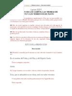 BENDICIÓN DE CAMPOS, TIERRAS DE CULTIVO Y TERRENOS DE PASTO