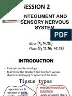 Session 2 Integument & sensory system