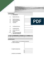 Formatos Plan de Trabajo en Blanco (5)