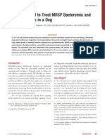 Use of Linezolid to Treat MRSP Bacteremia and Discospondylitis in a Dog