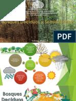 Bosques-Deciduos-y-Semideciduos.pdf