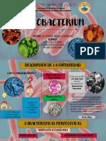 MYCOBACTERIUM.pdf