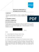 PRACTICA DE LABORATORIO WORK INDEX