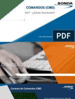 Capacitacion Comandos FINAL.pdf