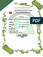 Proyecto Mipe en palto.pdf