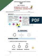 NUEVO GUIA HIDROCARBUROS AROMATICOS LIA.pdf