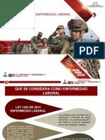 PRESENTACION INVESTIGACION DE ENFERMEDAD LABORAL 2ok.pdf