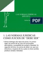 LAS NORMAS JURIDICAS (KELSEN)