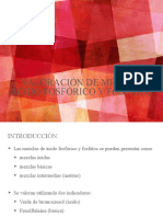 DETERMINACION DE FOSFATOS.pptx