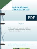 Síntesis de Alcoholes fermentacion LQ-123