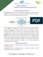 CEF - estrategias comunicaçao