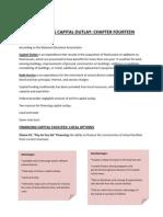 Financing Capital Outlay II