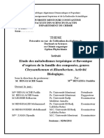 benaissa.pdf