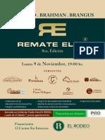 Remate Elite