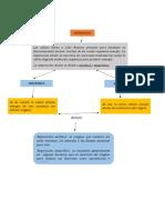 Mapa conceptual de la respiracion Aerobica y Anaerobica.docx