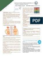 SISTEMA ENDOCRINO 8°.pdf