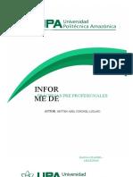 ANEXO 06 Informe de Practicas Pre profesionales