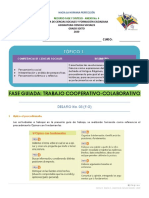 8° FG, PI, 2020 Anexo 4. Trabajo cooperativo.pdf