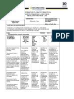 B. Formato de Planeación de PRACTICA PROFESIONAL