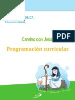 Proyecto Miryam - Programación curricular (1)