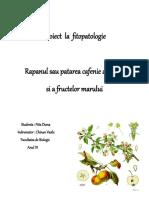 Proiect La Fitopatologie