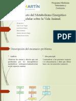 DIAPOSITIVAS METABOLISMO