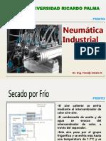 01FS.NeumaBasicaParteC