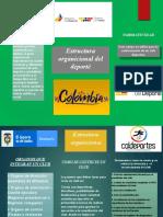 taller folleto estructura organicional del deporte.pptx