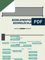 Presentación bioelementos y biomoleculas primer previo bioquimica 8 DE SEPTIEMBRE 2020