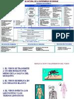 127501323-Historia-Natural-de-La-Enfermedad-Dengue.ppt