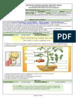 10.1 Guía N°10 La germinación.pdf