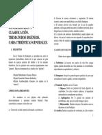 leccion_11_0607.pdf
