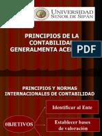 Principios y normas de la contabilidad.pdf