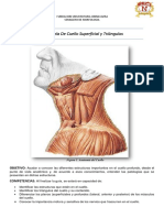 2 guis super lista.pdf