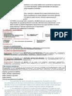 Auditoria Parcial.docx