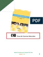 CNB Clase 7