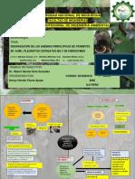 DEGRADACIÓN DE LAS ENZIMAS FIBROLÍTICAS DE TRAMETES SP. EUM1, PLEUROTUS OSTREATUS IE8 Y DE FIBROZYME®