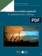 UNQUI - Hernan Olaeta -Delincuencia Económica Organizada
