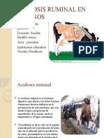 ACIDOSIS RUMINAL EN BOVINOS ESTEFANI p.pptx