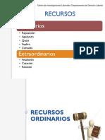 Presentación Recursos Ordinarios (1)