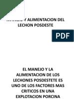MANEJO Y ALIMENTACION DEL LECHON POSD